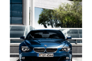 BMW 650I CONVERTIBLE 2008 E64 Owner's Manual (264 Pages)